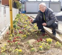 花岡の花壇