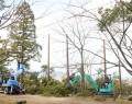 松坂城跡の樹木伐採