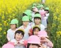 伊勢寺菜の花畑