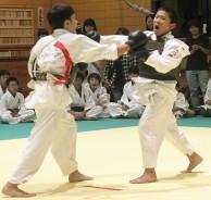 日本拳法市民大会