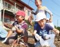 第五小と神戸まち協の芋掘り