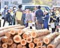 三瀬谷小が木材市場見学