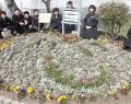 鎌中花壇に花文字