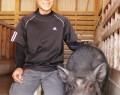 191116五桂の豚