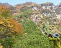 201109大和谷の紅葉