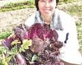210114紫野菜育てる明和町の中谷さん