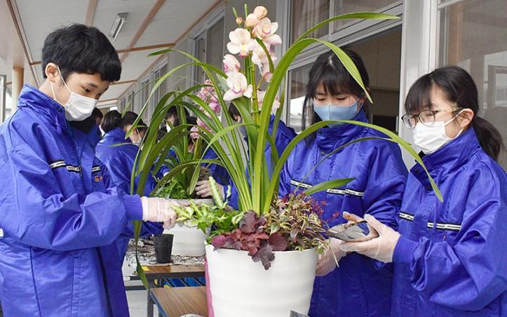 210123嬉野中で寄せ植えや花壇作り