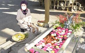 210109竹神社の花手水