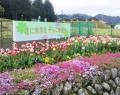 210410有間野の花畑